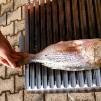 Secrets of Fish Filleting and Grilling