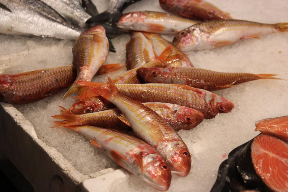 Eat istria secrets of fish filleting and grilling for Eating mullet fish