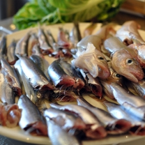 to-be-fried-sardines-hake